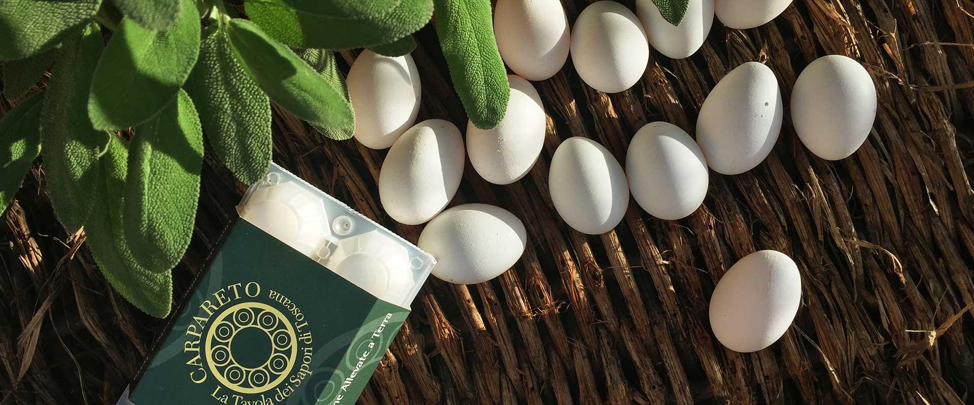 carpareto-agricola-uova